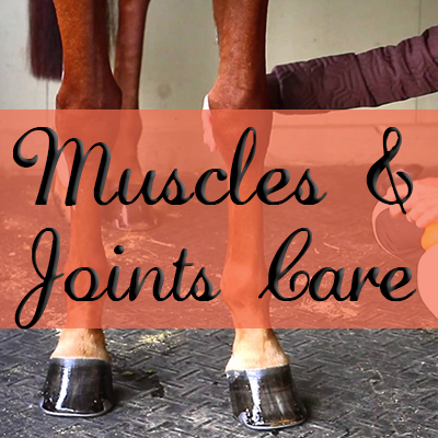 Muscles & Joints Care