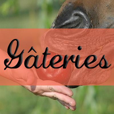 Gâteries pour chevaux
