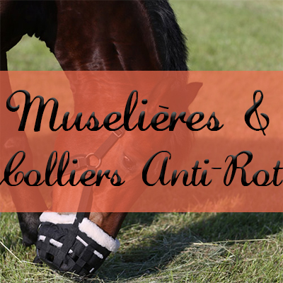 Muselières & Colliers Anti-Rot