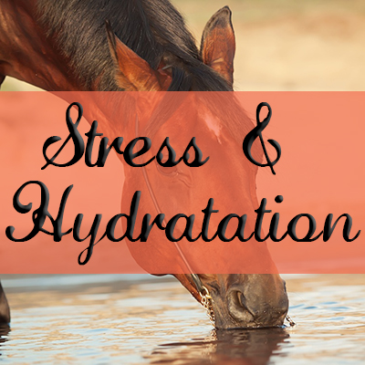 Stress & Hydratation