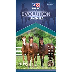 Purina Evolution Juvenile Horse Feed 20kg